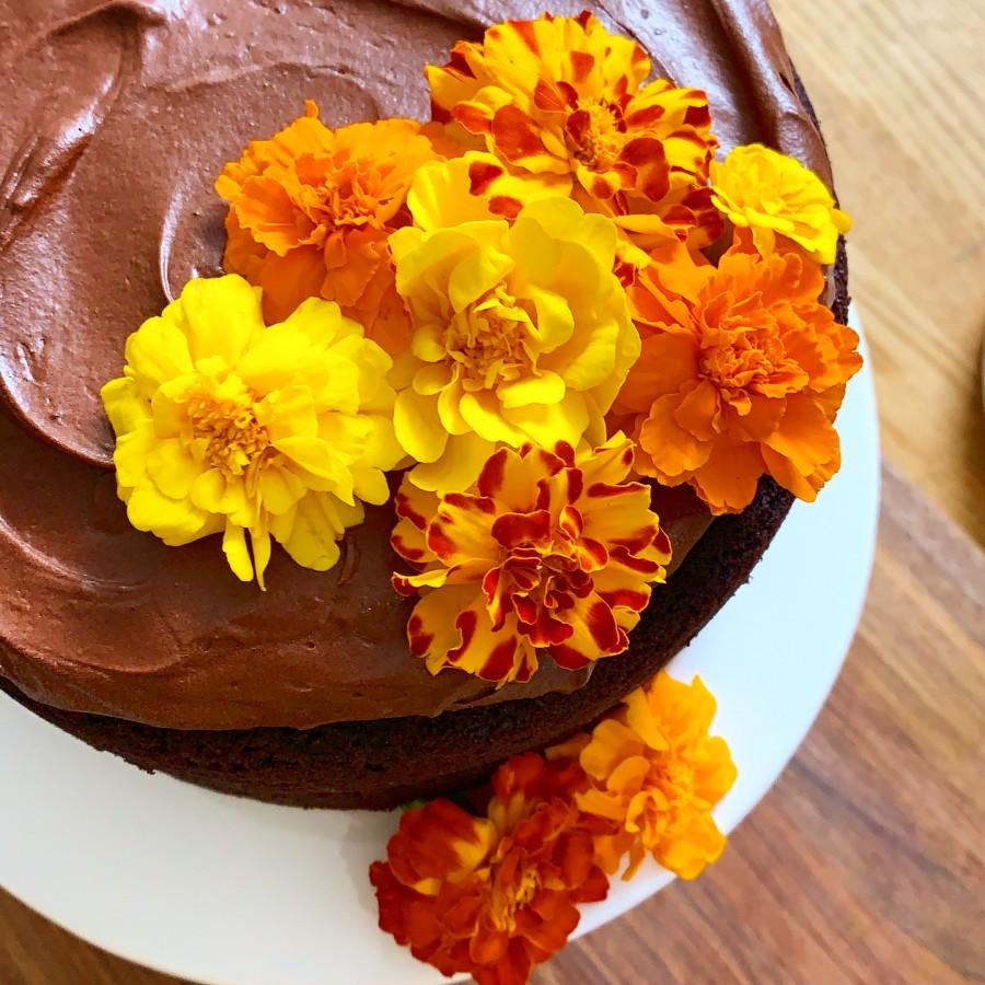 Vegan and Gluten-Free Chocolate Espresso Cake